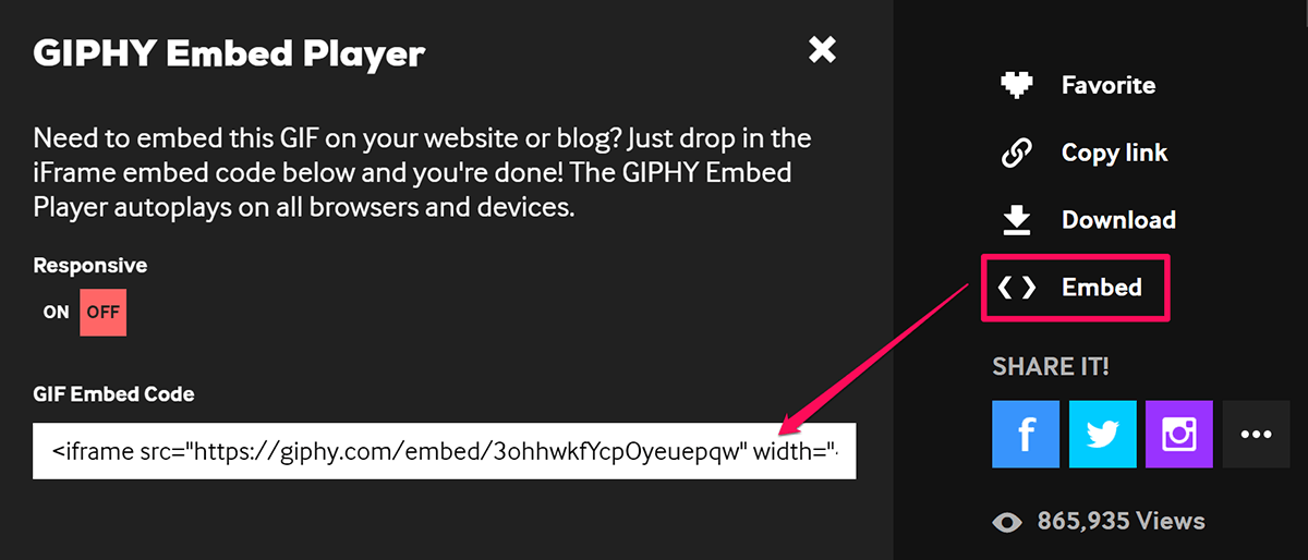 Giphy Embed Code in Thrive Comments